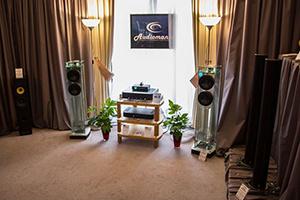 Аудиомания на What Hi-Fi Show 2014