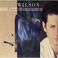 Виниловая пластинка BRIAN WILSON - BRIAN WILSON. EXTENDED VERSION (2 LP)