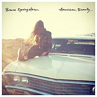 Виниловая пластинка BRUCE SPRINGSTEEN - AMERICAN BEAUTY