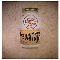 Виниловая пластинка CADILLAC THREE - TENNESSEE MOJO