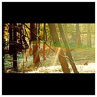 Виниловая пластинка CHILDISH GAMBINO - CAMP (2 LP)