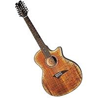 Гитара электроакустическая Dean EFM FTGE
