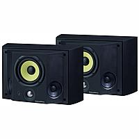 Специальная тыловая акустика B&W DS3