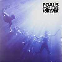 Виниловая пластинка FOALS - TOTAL LIFE FOREVER
