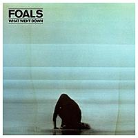 Виниловая пластинка FOALS - WHAT WENT DOWN