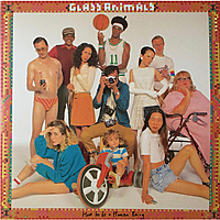 Виниловая пластинка GLASS ANIMALS - HOW TO BE A HUMAN BEING (2 LP)