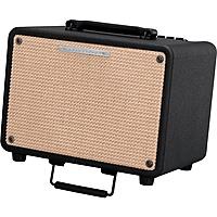 Гитарный комбоусилитель Ibanez T30-U Troubadour Acoustic Combo
