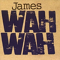 Виниловая пластинка JAMES - WAH WAH (2 LP)