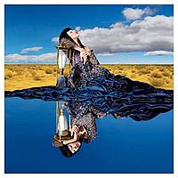 Виниловая пластинка KIMBRA - THE GOLDEN ECHO (2 LP)
