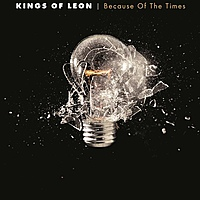 Виниловая пластинка KINGS OF LEON - BECAUSE OF THE TIMES (2 LP)