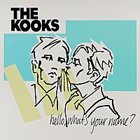 Виниловая пластинка THE KOOKS - HELLO, WHAT'S YOUR NAME? (2 LP)