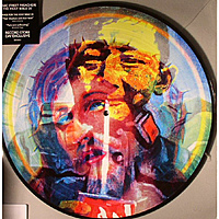 Виниловая пластинка MANIC STREET PREACHERS - THE HOLY BIBLE 20 US MIX (PICTURE DISC)