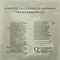 Виниловая пластинка ROBERTO CACCIAPAGLIA - TRANSARMONICA