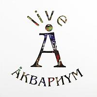 Виниловая пластинка АКВАРИУМ - BOX SET (10 LP)
