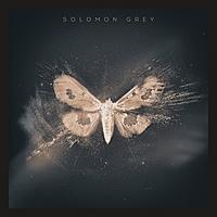 Виниловая пластинка SOLOMON GREY - SOLOMON GREY (2 LP)