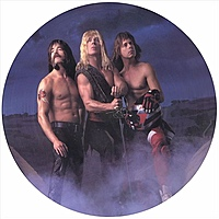 Виниловая пластинка SPINAL TAP - BREAK LIKE THE WIND (PICTURE)