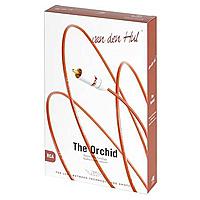 "Van Den Hul The Orchid, обзор. Журнал ""DVD Эксперт"""