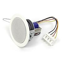 Встраиваемая акустика трансформаторная Visaton DL 8/100 V