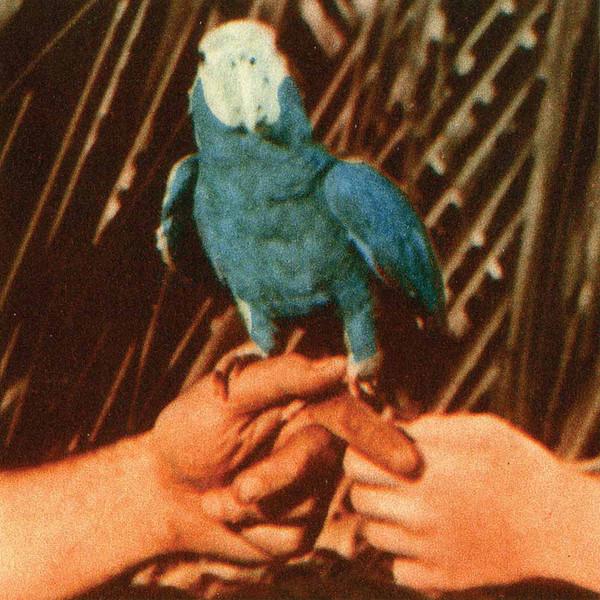 Andrew Bird Andrew Bird - Are You Serious andrew bird andrew bird are you serious