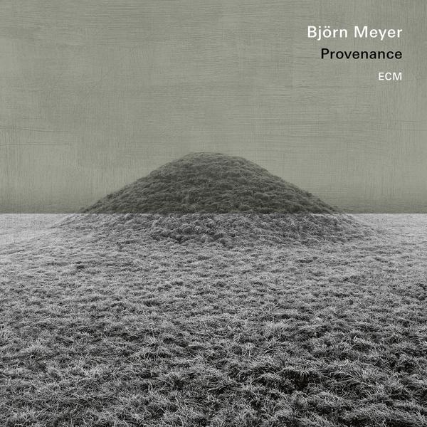 Bjorn Meyer Bjorn Meyer - Provenance (180 Gr) брюки meyer meyer mp002xm23pgw