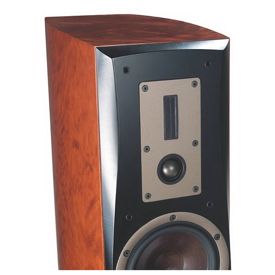 DALI Euphonia MS 5, купить напольную акустику DALI Euphonia MS 5