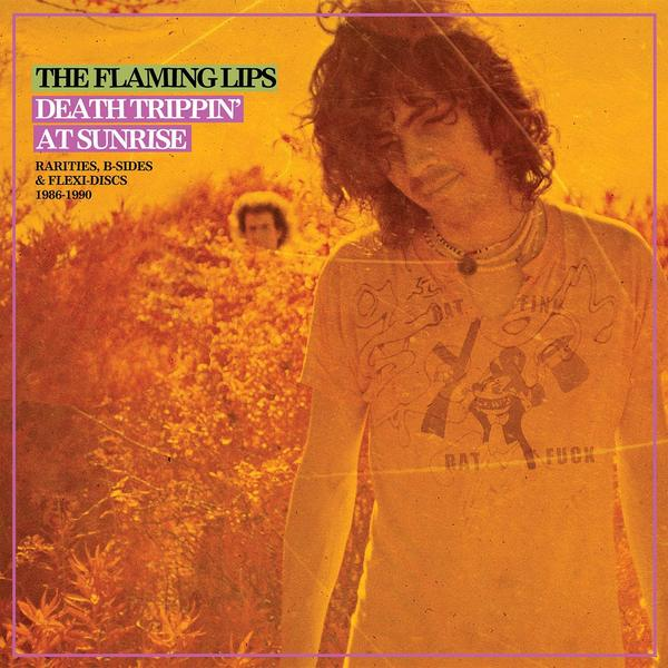 Flaming Lips Flaming Lips - Death Trippin' At Sunrise: Rarities, B-sides Flexi-discs 1986-1990 (2 LP) цена и фото