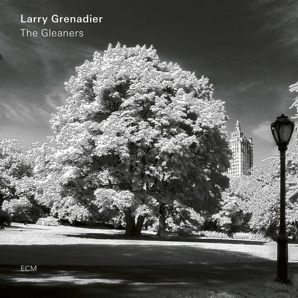 Larry Grenadier Larry Grenadier - The Gleaners (180 Gr) john skewes larry loves chicago