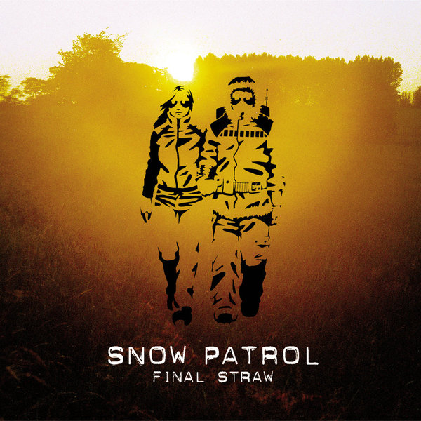 Snow Patrol Snow Patrol - Final Straw flower decor straw tote bag