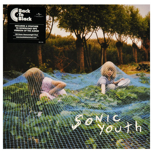 Sonic Youth Sonic Youth - Murray Street sonic youth sonic youth dirty 2 lp