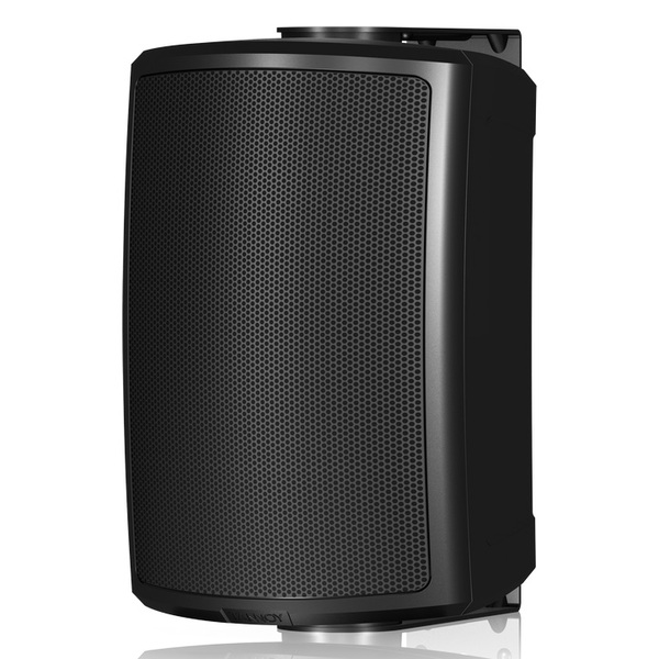 Всепогодная акустика Tannoy AMS 5ICT Black цены