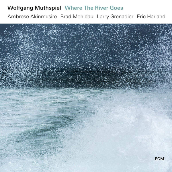 Wolfgang Muthspiel Wolfgang Muthspiel - Where The River Goes (180 Gr) wolfgang hutt walter womacka
