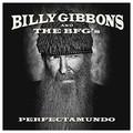 Виниловая пластинка BILLY GIBBONS - PERFECTAMUNDO