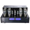 Ламповый стереоусилитель мощности Cary Audio Design CAD 120S.