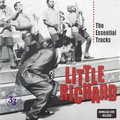 Виниловая пластинка LITTLE RICHARD - THE ESSENTIAL TRACKS (2 LP)
