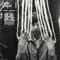 Виниловая пластинка PETER GABRIEL - PETER GABRIEL 2: SCRATCH (2 LP, 180 GR)