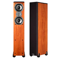 Напольная акустика Polk Audio TSi300
