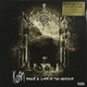 Виниловая пластинка KORN - TAKE A LOOK IN THE MIRROR (2 LP, 180 GR)