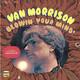 Виниловая пластинка VAN MORRISON - BLOWIN' YOUR MIND