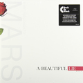 Виниловая пластинка THIRTY SECONDS TO MARS - BEAUTIFUL LIE (180 GR)