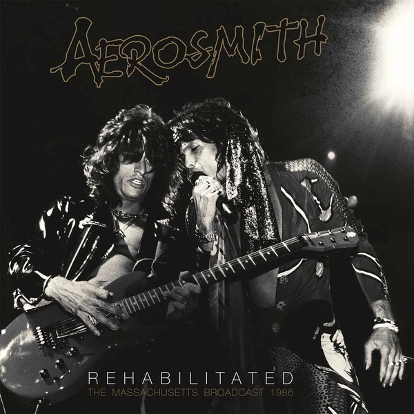 Aerosmith - Rehabilitated (2 LP)