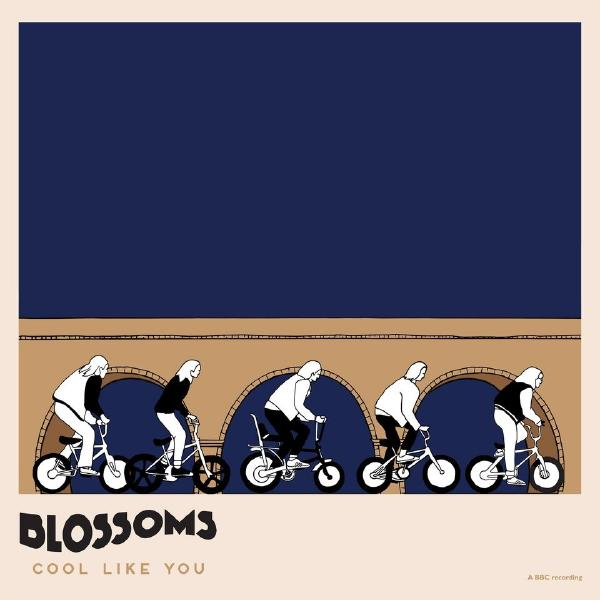 купить Blossoms Blossoms - Cool Like You (2 LP) дешево