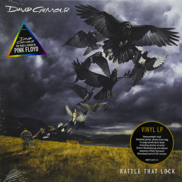 David Gilmour David Gilmour - Rattle That Lock (180 Gr)