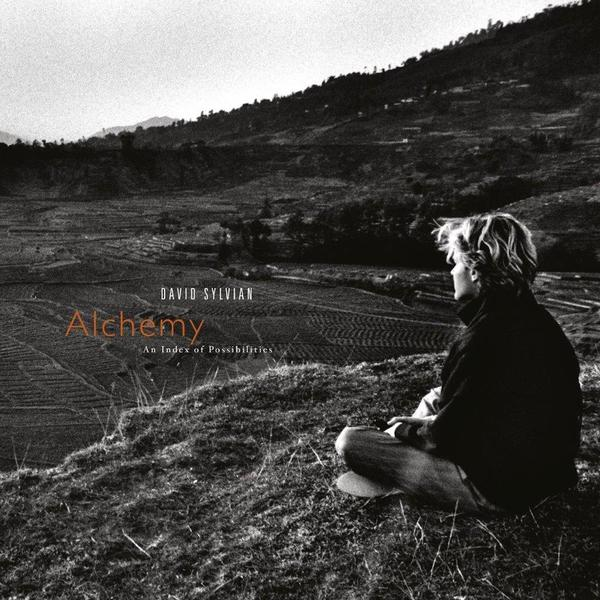 David Sylvian David Sylvian - Alchemy: An Index Of Possibilities david gilmour on an island limited edition lp