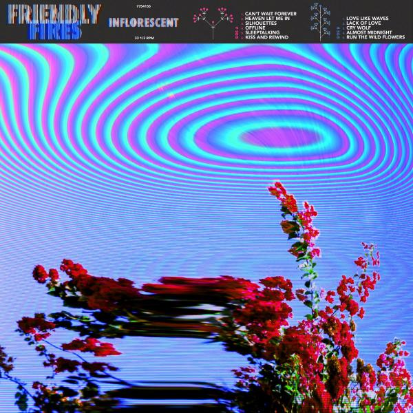 лучшая цена Friendly Fires Friendly Fires - Inflorescent