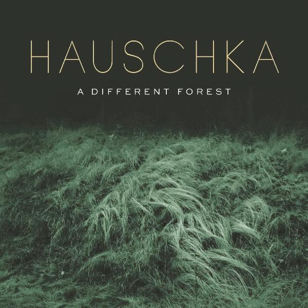 Hauschka Hauschka - A Different Forest (180 Gr) цена и фото