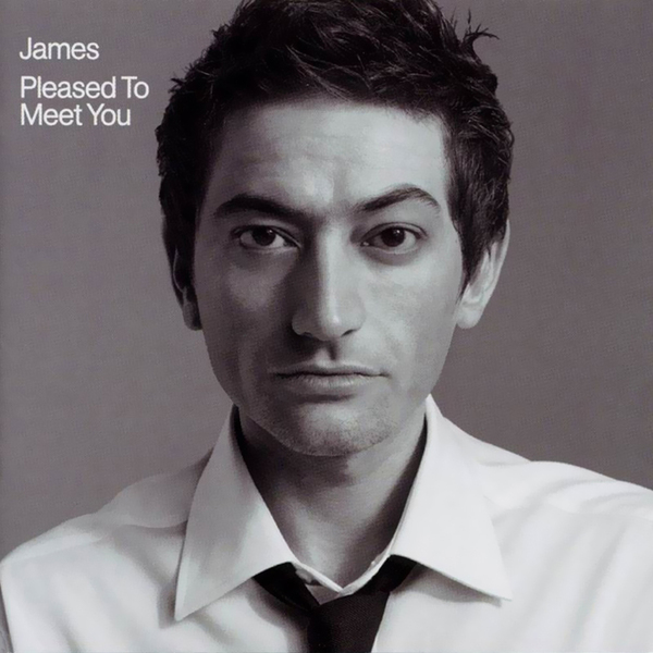 JAMES - Pleased To Meet You (2 LP)