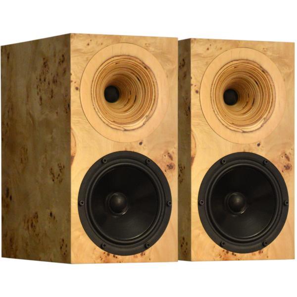Фото - Полочная акустика Odeon Audio Orfeo Poplar полочная акустика odeon audio orfeo walnut root