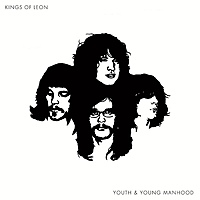 Виниловая пластинка KINGS OF LEON - YOUTH AND YOUNG MANHOOD (2 LP, 180 GR) (64122)