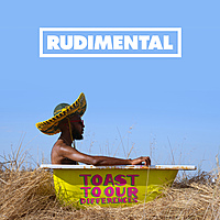 Виниловая пластинка RUDIMENTAL - TOAST TO OUR DIFFERENCES (2 LP)