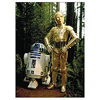 Магнит Star Wars - C-3PO & RC-D2